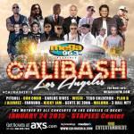 Pitbull, Don Omar, Carlos Vives, Wisin, entre otros reunidos en el Calibash 2015